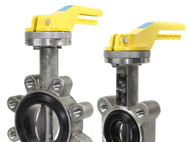 Stainless Steel TTV Actuated Butterfly Valves.jpg
