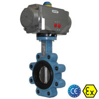 Lugged Ductile Cast Iron Air Actuated Butterfly Valves Soft Seat TTV