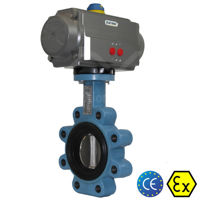 Lugged Ductile Iron Butterfly Design Air Actuated Water Valves Atex