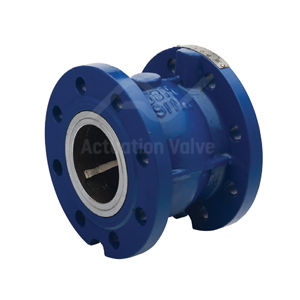 Cast Iron Axial Disc Check Valves EPDM Seat Stainless Steel Spring