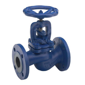 Cast Iron Bellows Seal Type Globe Valves Flanged PN16 Graphite Packing