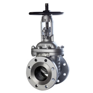 Class 300 WCB Carbon Steel Raised Face BB Rising Stem Gate Valves T5