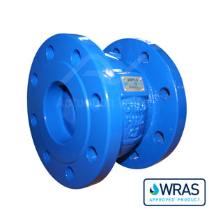 Epoxy Coated Cast Iron Wras Approved EPDM Seal Axial Disc Check Valves