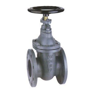 Flanged ANSI 150FF Cast Iron Gate Valves Brass Stem Inside Screw RS
