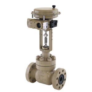 Heavy Duty Threaded Seat Samson Globe Control Valves General Service