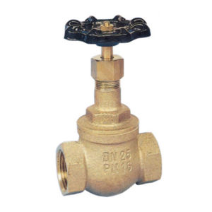 Screw Down Non Return Bronze Globe Valve SDNR BSPP PTFE Seat