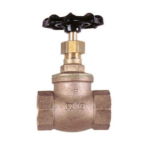 Screwed BSPP Bronze Globe Valves PN16 Rated PTFE Seat