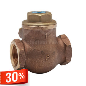 Screwed BSPT BS5154 Series B Metal Disc Bronze Swing Check Valves PN25