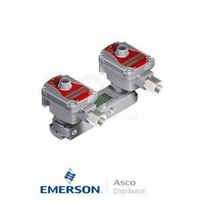 "0.25"" BSPP WSLPKFG551A322MO Asco Process Automation Solenoid Valves Pilot Operated 48 VAC Brass"