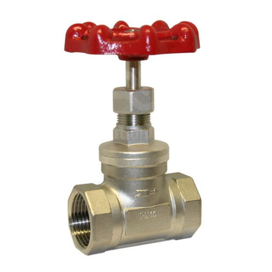 200 PSI Rated Screwed Globe Valves Stainless Steel CF8M Bonnet & Disc