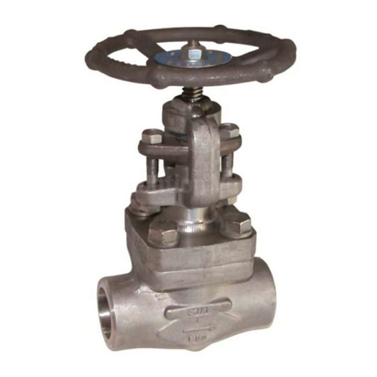 Forged Stainless Steel Class 800 F316L Stainless Steel Globe Valves