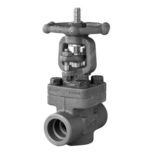 Screwed BSPT F316L Stainless Steel Gate Valve OS&Y BB Tim 16 Class 800