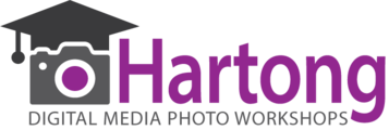 Hartong Digital Media llc