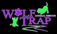 Wolf Trap Animal Rescue