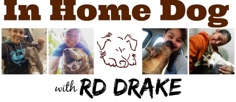In Home Dog with RD Drake