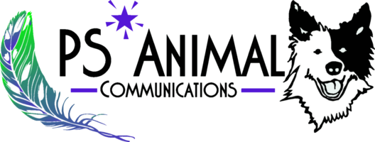 PS Animal Communications