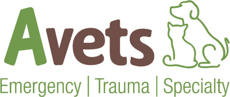 Compassion-First Pet Hospitals