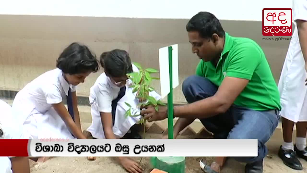 Manusath Derana gifts herbal gardens to Visakha and Sri Vijayarama MV