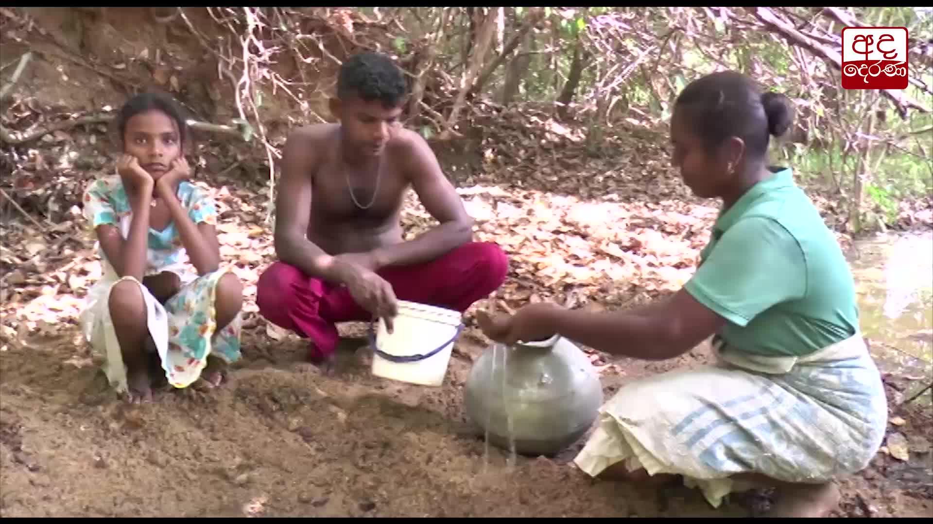 Village in Padiyathalawa with 250 families has no clean drinking water