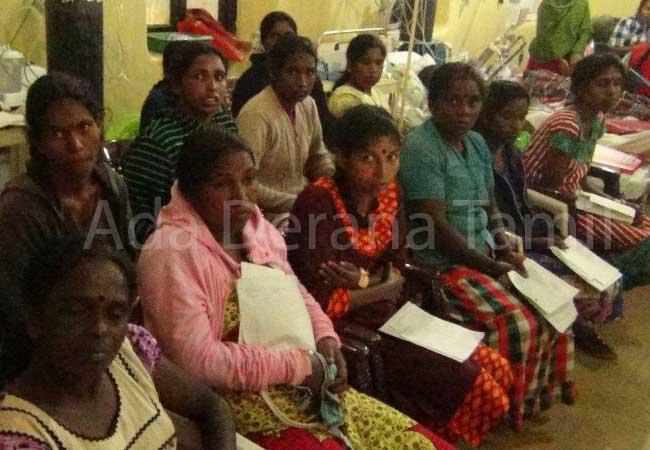 குளவி கொட்டுக்கு இலக்காகி 12 பெண்கள் வைத்தியசாலையில் அனுமதி