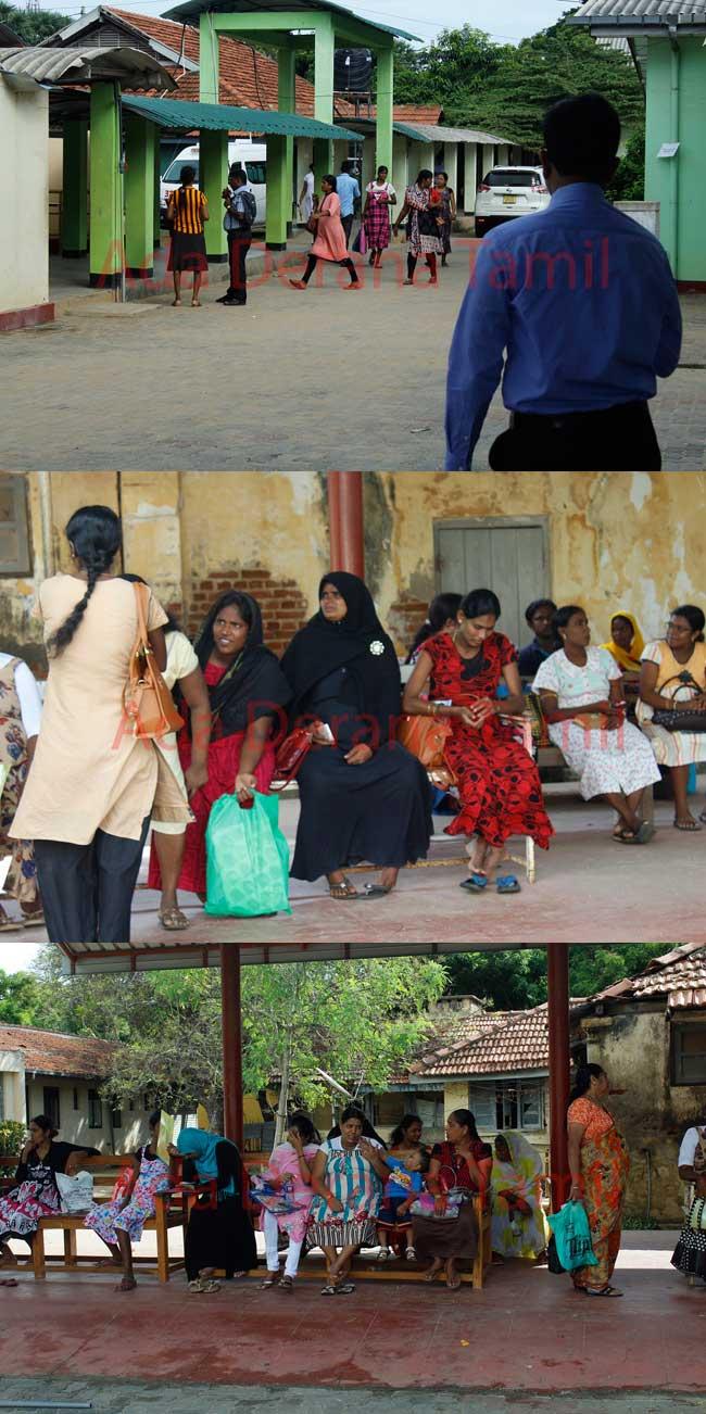 மன்னார் மாவட்ட வைத்தியர்கள் அடையாள பணிப்பகிஷ்கரிப்பில் (படங்கள்)