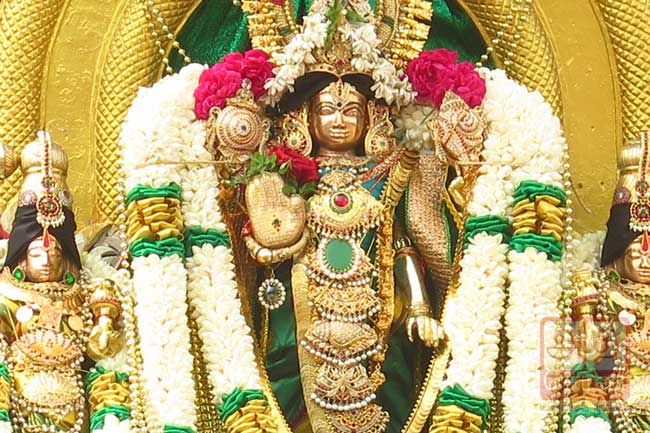 வைகுண்ட ஏகாதசி ப்ரம்மோற்சவம்