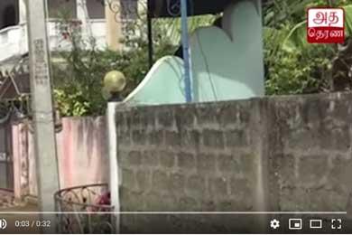 கொக்குவில் பிடாரி அம்மன் கோவிலடியில் வன்முறைக் கும்பல் அட்டகாசம்