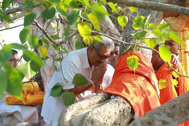 ஜயஸ்ரீ மகா போதியை வழிப்பட்ட கோட்டாபய உள்ளிட்ட குழுவினர்