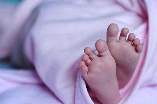 ஆபரேஷன் தியேட்டருக்குள் புகுந்து குழந்தையை கொன்ற நாய்