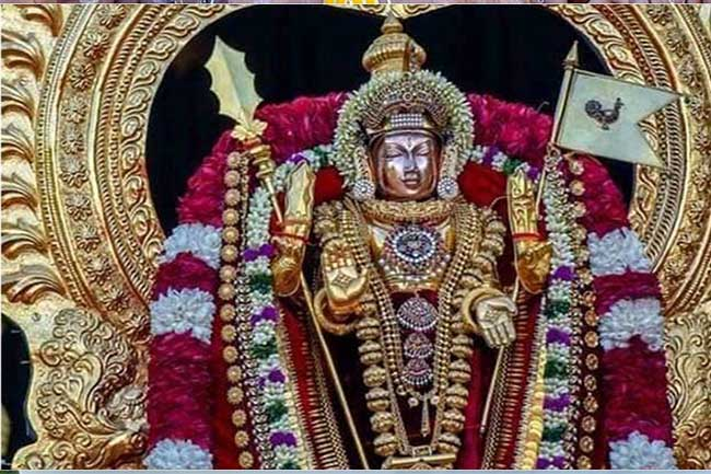 கந்தனின்  திருமஞ்சத் திருவிழா...