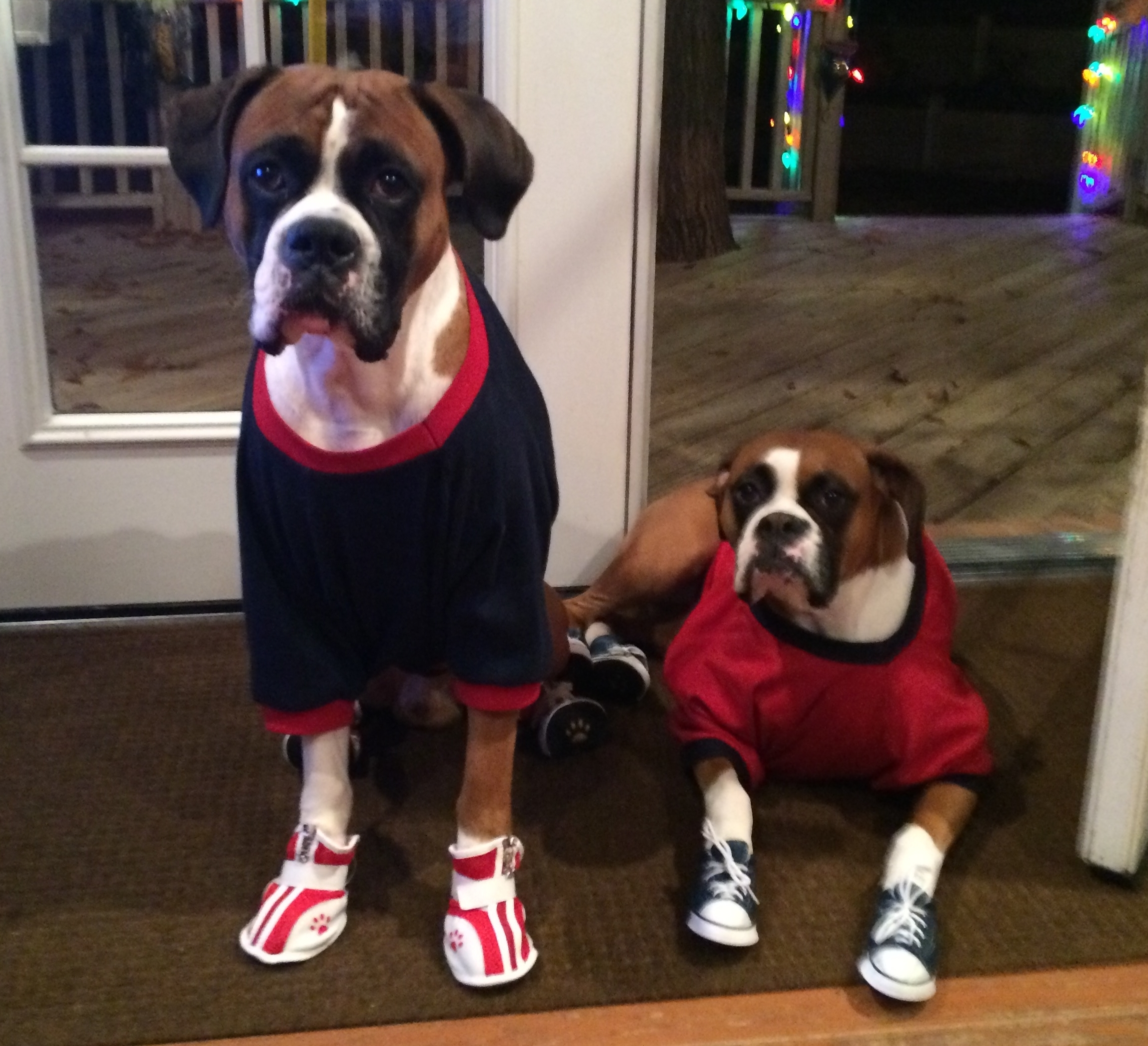 Boxers Wearing Boots
