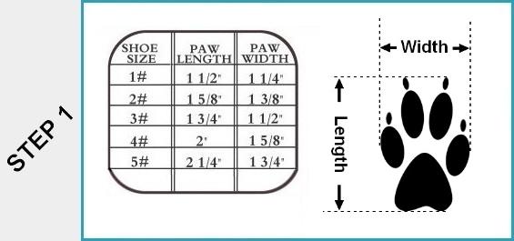 Designer Dog Shoe Size Chart
