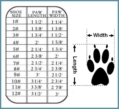 Hi-Toppers Size Chart