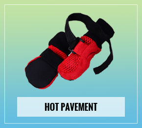 Dog Booties For Hot Pavement Amazon