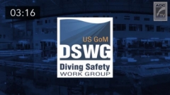 Celebrating 5 Years of the Dive Safety Work Group