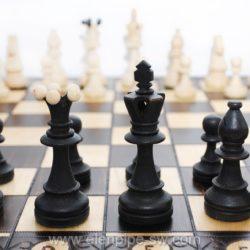 1008-figures-chess-Consul-Poland-szachy-Polskie
