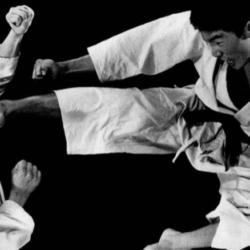 848x438-brosok-v-karate.7f8
