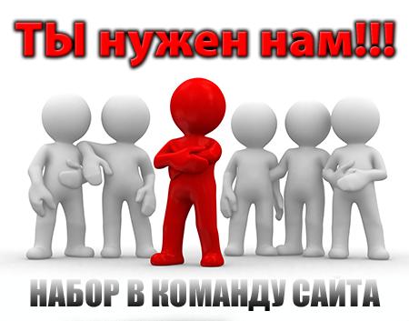 1362651159_nabor-jurnalistov-na-sait
