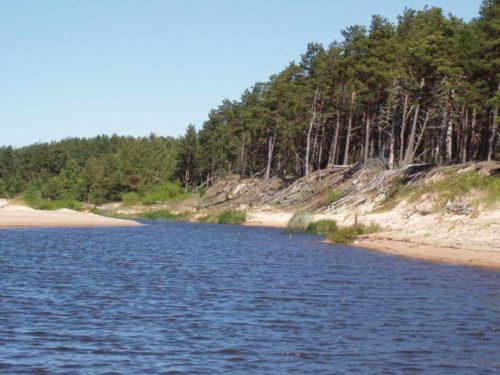 местами река на пляже разливается широко и образует купальни