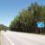 трасса ВИА-БАЛТИКА(Е-67)в р-не лесного хозяйства ВАЙЧИ