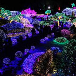 01-Ландшафтное освещение сада