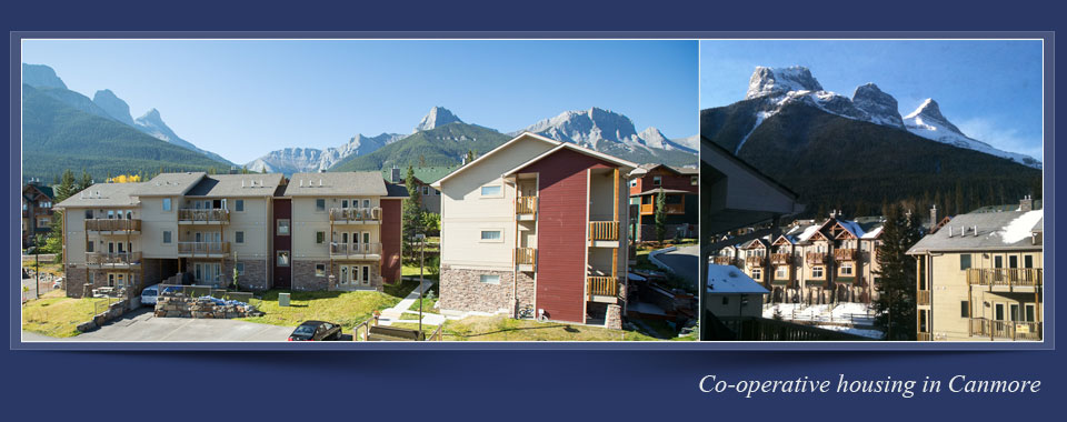 Mountain Haven Co-op Website - Canmore Alberta