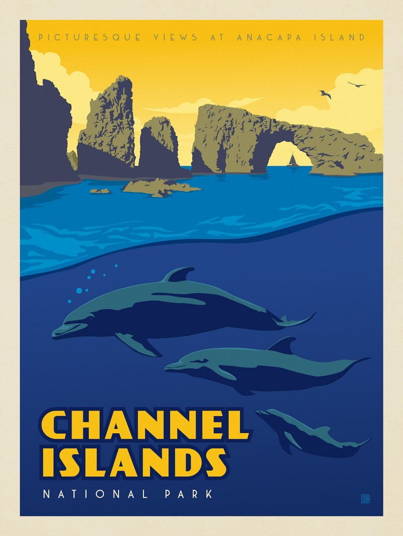 Channel Islands National Park: Dolphins