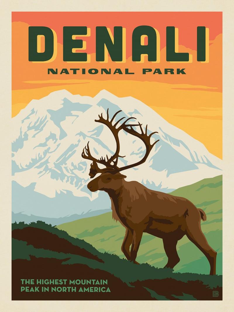 Denali National Park: Caribou