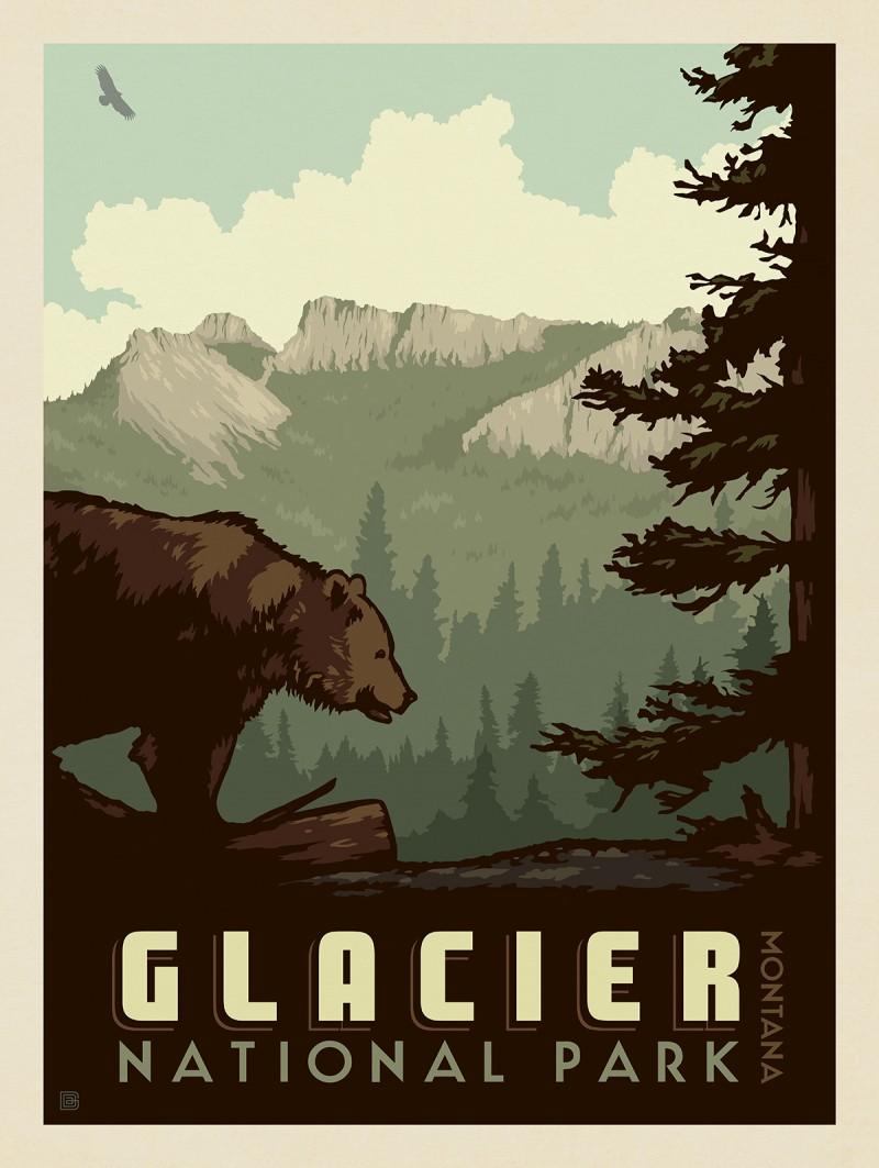 Glacier National Park: Bear