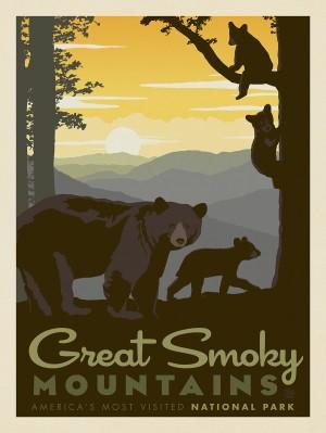 Great Smoky Mountains National Park: Mama Bear & Cubs