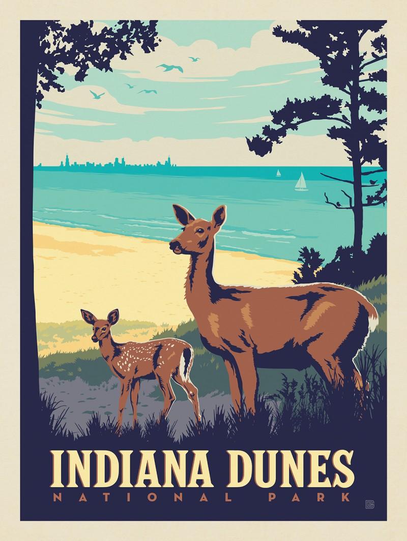 Indiana Dunes National Park: Deer