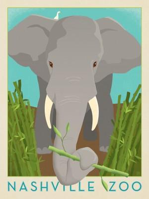 Nashville Zoo (Elephant)