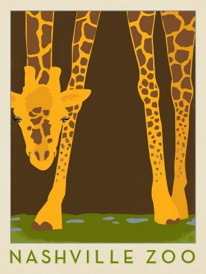 Nashville Zoo (Giraffe)