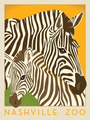 Nashville Zoo (Zebra)